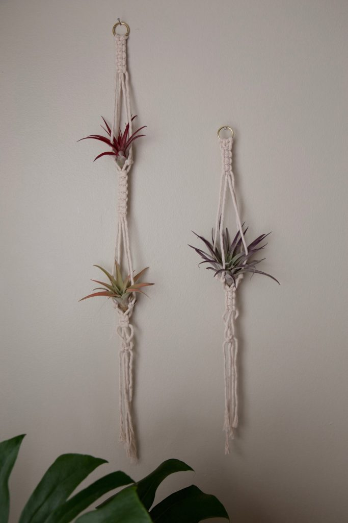 hanging macrame planters for air plants