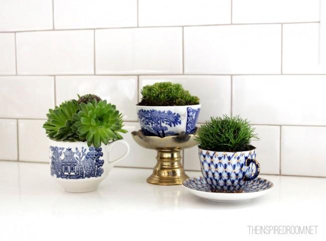 plants-in-teacups-fairy-mini-garden