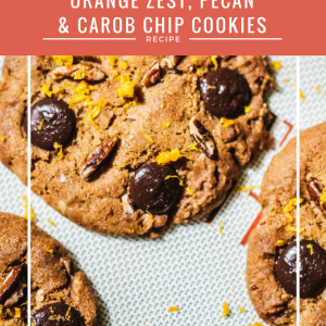 orange zest, pecan & carob chip cookies