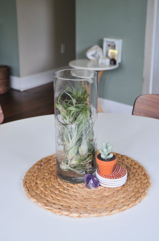 easy air plant centerpiece pop shop america