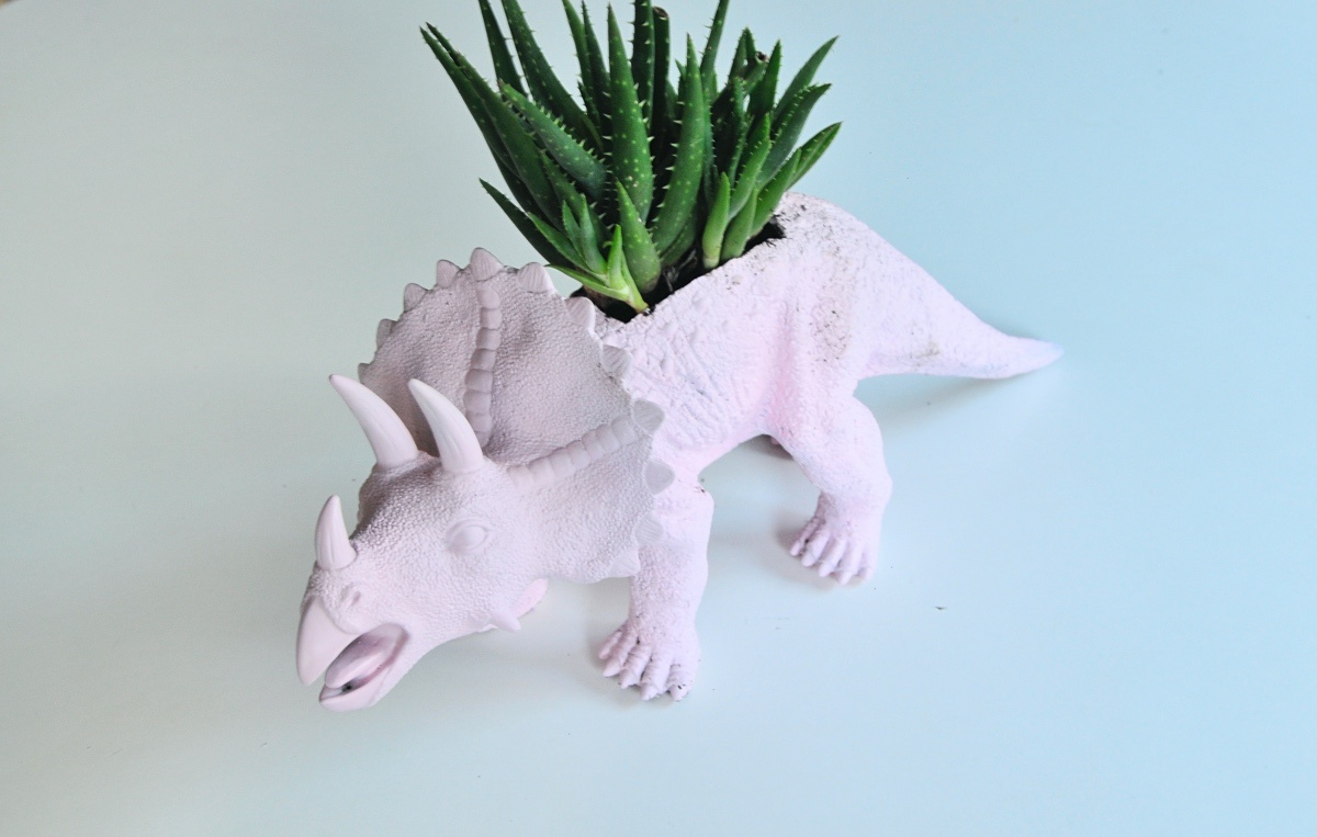 how to make a dinosaur terrarium planter with succulents pop shop america