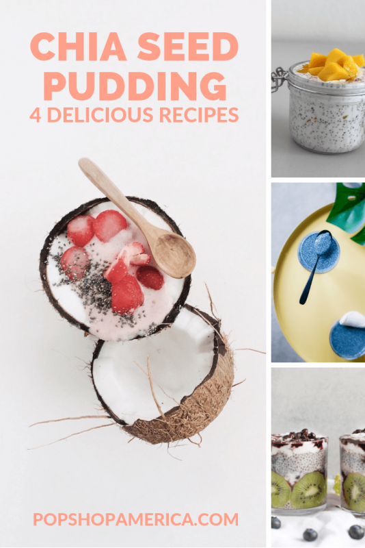 chia seed pudding recipes 4 ways pop shop america