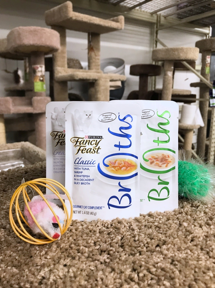fancy feast broths at petsmart pet supply houston