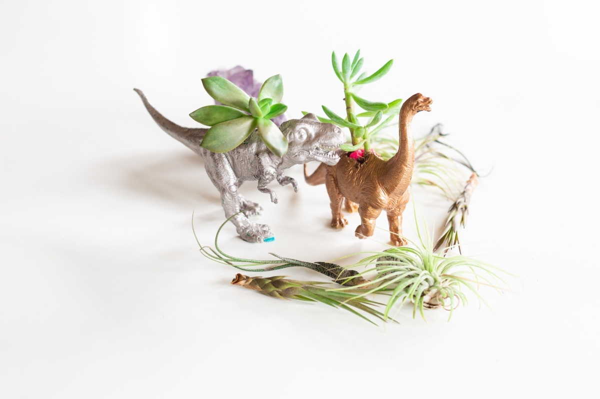 in focus gilded dinosaur planters diy pop shop america