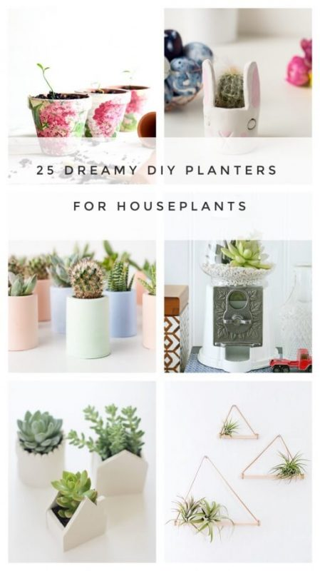 25-diy-planters-for-small-houseplants-and-terrariums-510x908