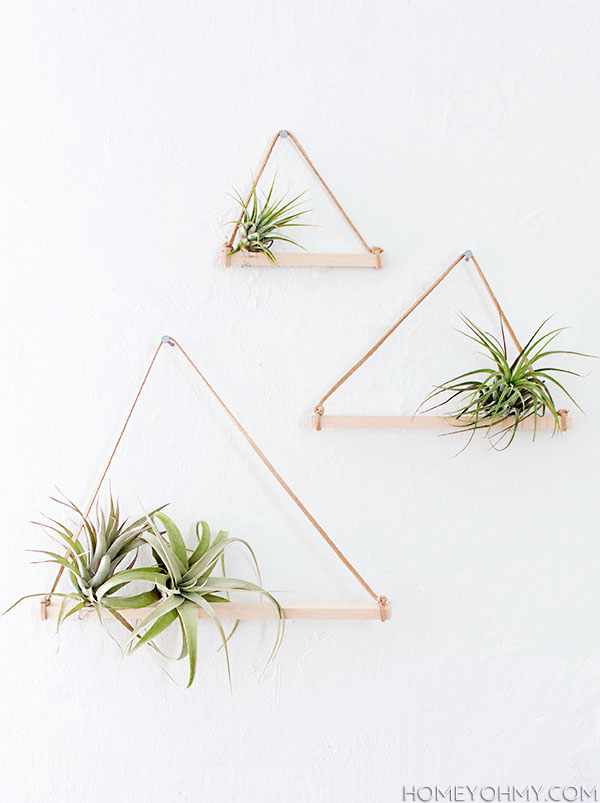 Air-Plant-shelves in wood and leather