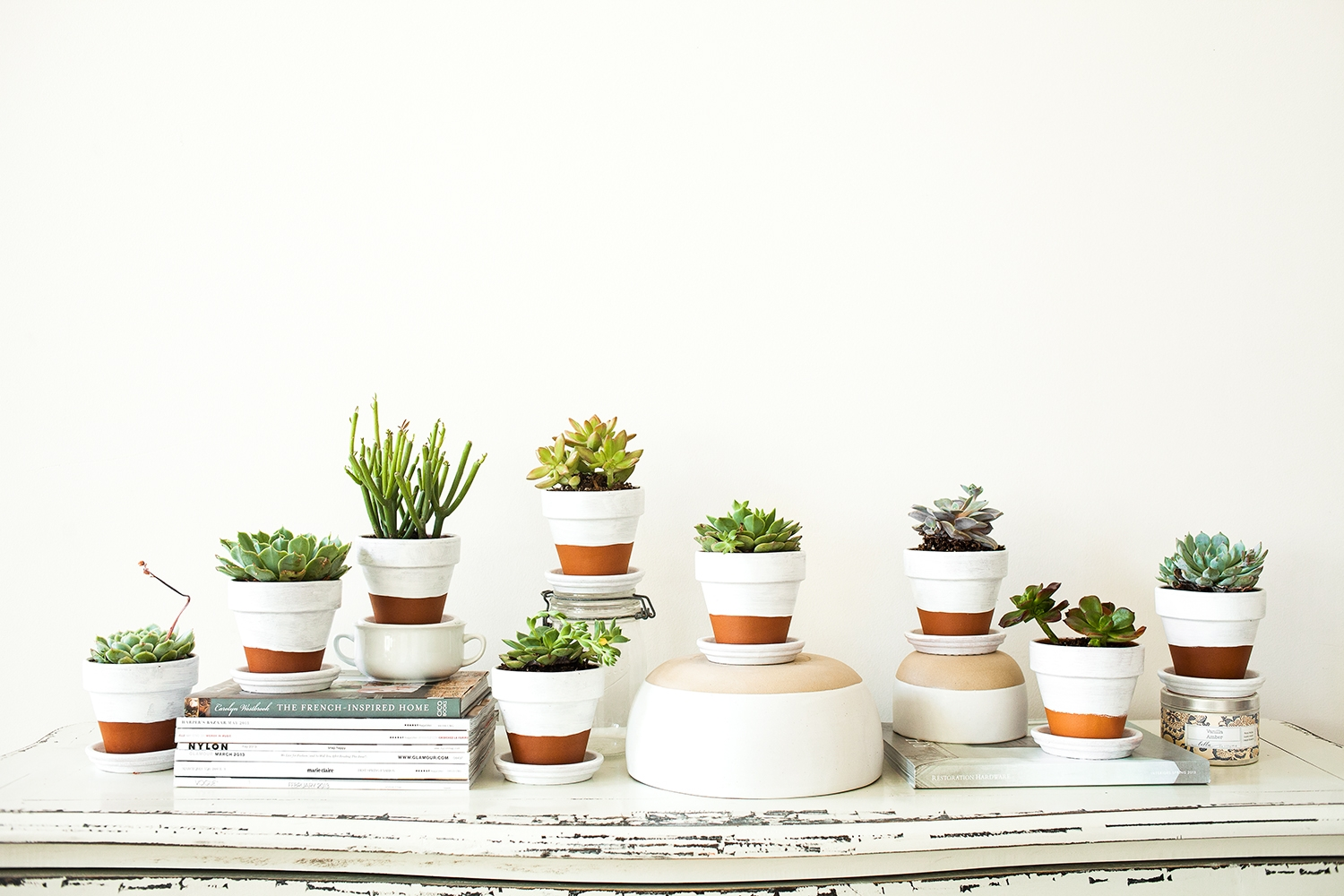 Painted-Pots-+-Succulents-7