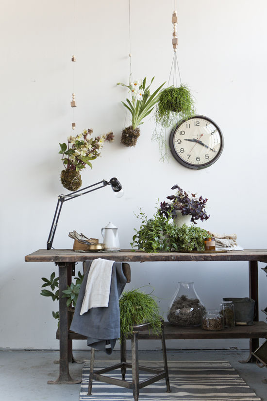 Wood Bead Kokedama hanging houseplants by design love fest