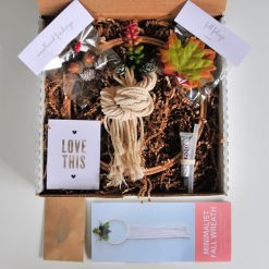 diy-succulent-wreath-kit-in-box-pop-shop-america_square