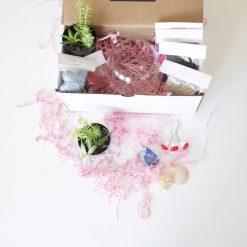 supplies-inside-the-make-your-own-succulent-terrarium-kit-scaled-square