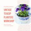 vintage teacup planters gardening class houston pop shop america