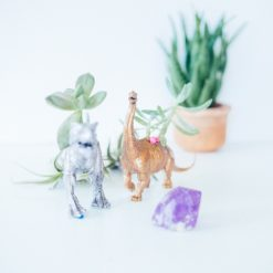 finished-dinosaur-planter-diy-craft-in-style-subscription-box-pop-shop-america_square