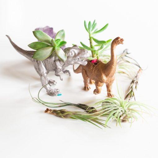 in-focus-gilded-dinosaur-planters-diy-pop-shop-america_square