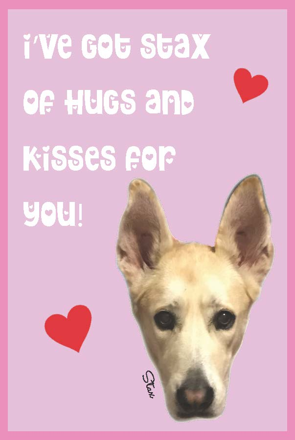 stax big dog printable valentine