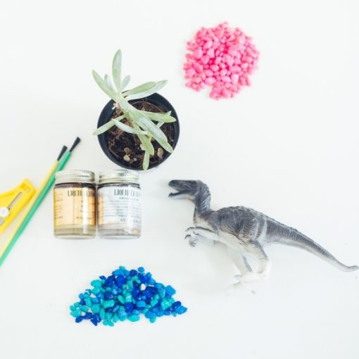 supplies-to-make-a-succulent-planter-with-a-dinosaur-toy_square