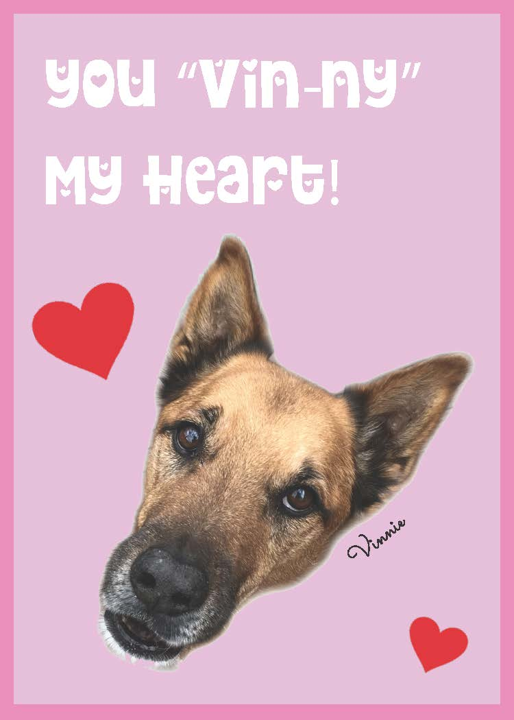 vincent the dog animal valentines cards printable pop shop america