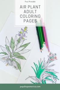 free air plant adult coloring pages prints pop shop america