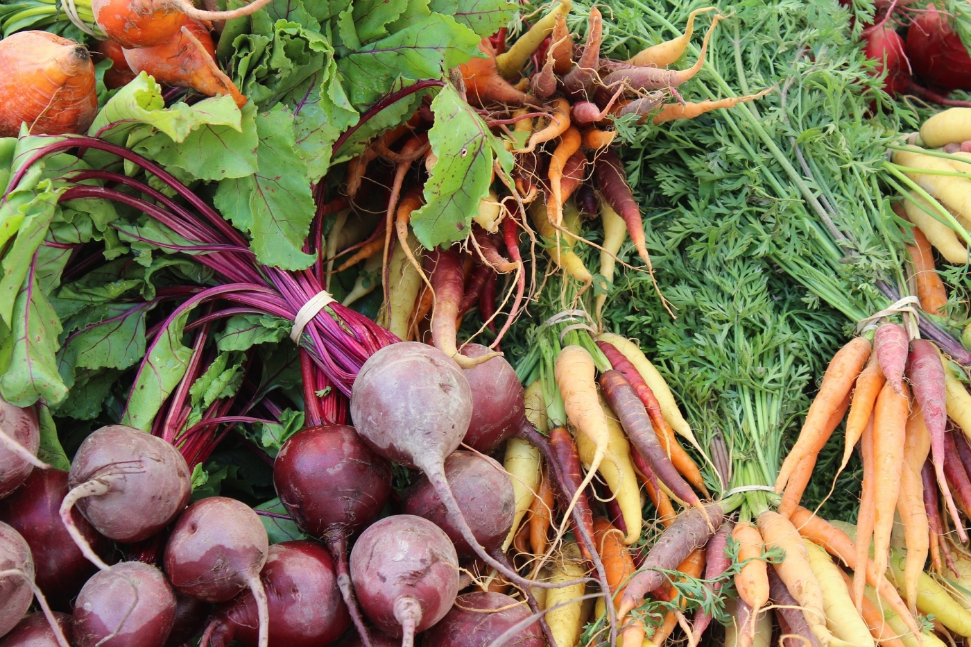 fresh beets and carrots to make balsamic roasted veggies pop shop america