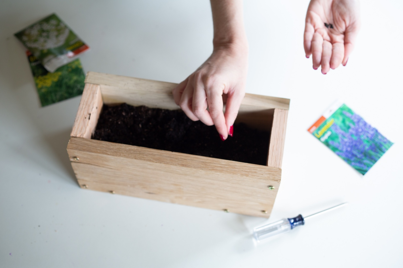 how to plant herb seeds in the diy wood planter box