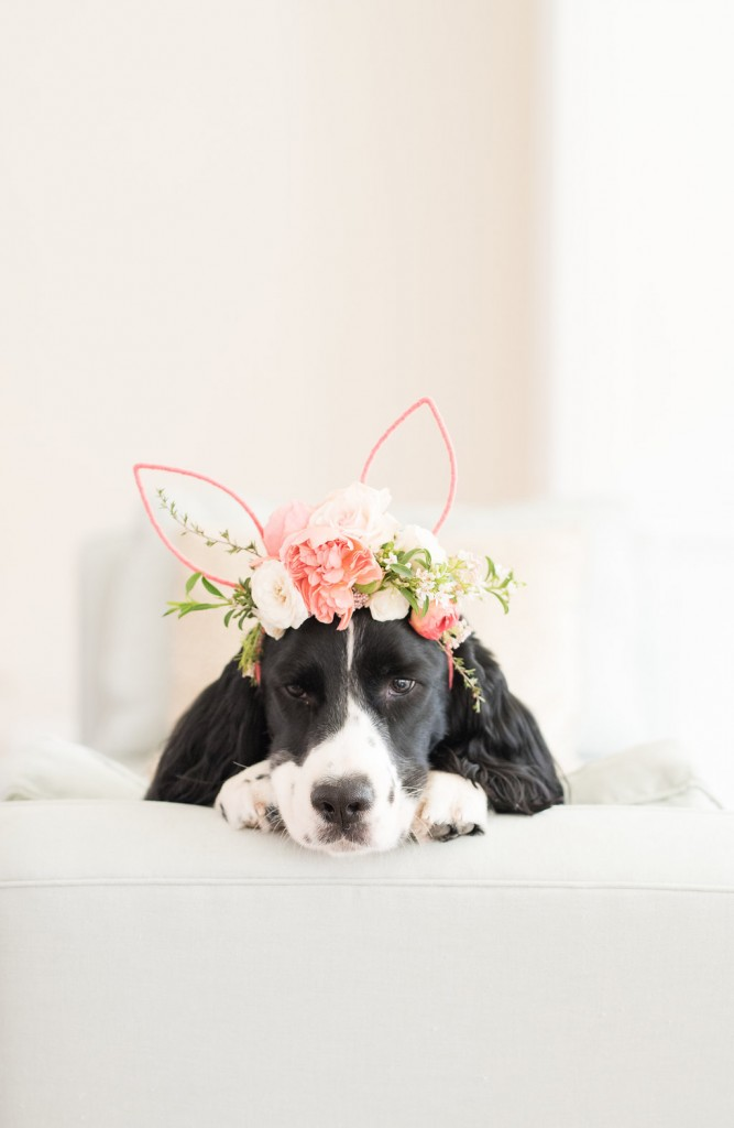 lavin label diy floral bunny ears flower crown