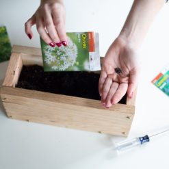 plant herb seeds to the diy wood planter box pop shop america