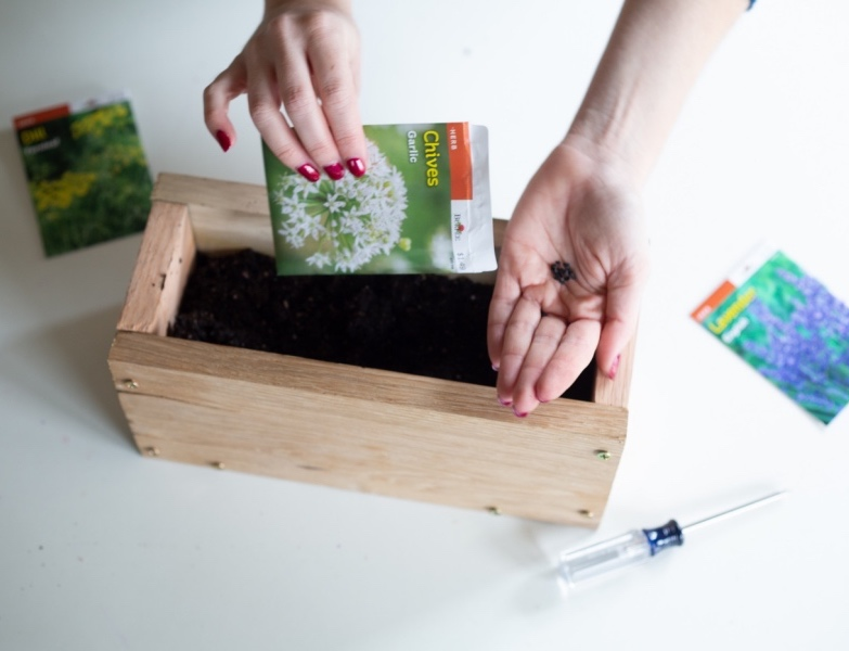 plant herb seeds to the diy wood planter box pop shop america_diy web home