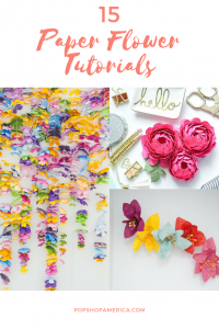 15 paper flower tutorials pop shop america