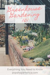 Greenhouse Gardening 101 beginners pop shop america