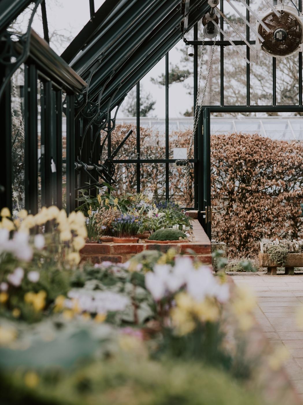 beginners guide to greenhouse gardening plant tutorials