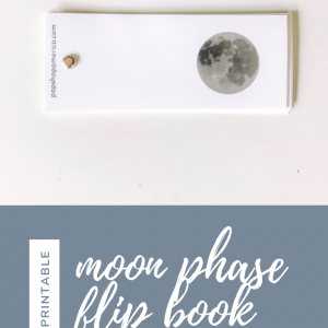 moon phase flip book diy printable feature pop shop america