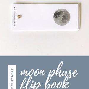 moon phase flip book diy printable feature pop shop america