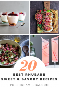20 best rhubarb recipes round up sweet and savory dishes pop shop america