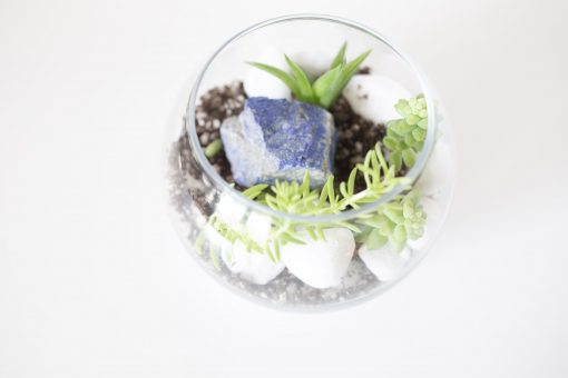 gemstone terrarium diy gardening kit pop shop america