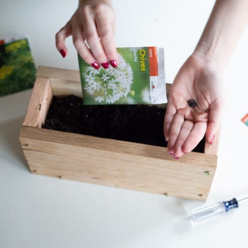plant-herb-seeds-to-the-diy-wood-planter-box-pop-shop-america_square