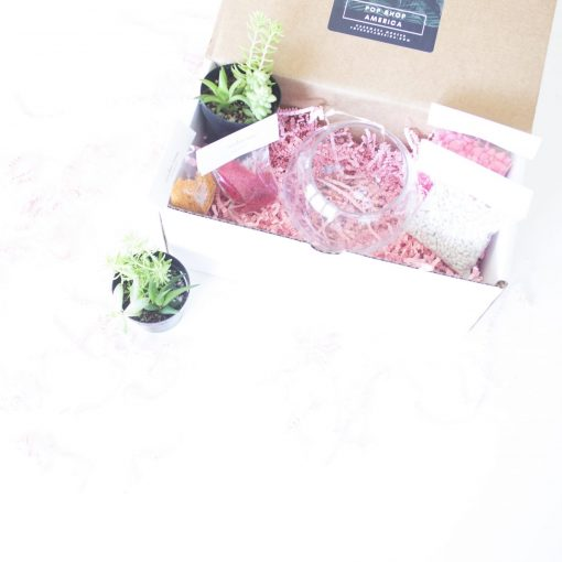 small-make-your-own-terrarium-kit-with-succulents-gardening-supplies-scaled_square