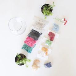 succulent-terrarium-kit-gardening-supplies-pop-shop-america-scaled_square