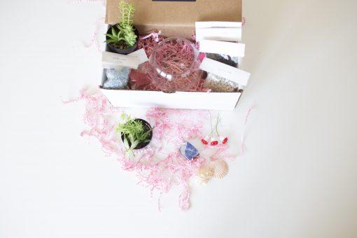 supplies inside the make your own succulent terrarium kit
