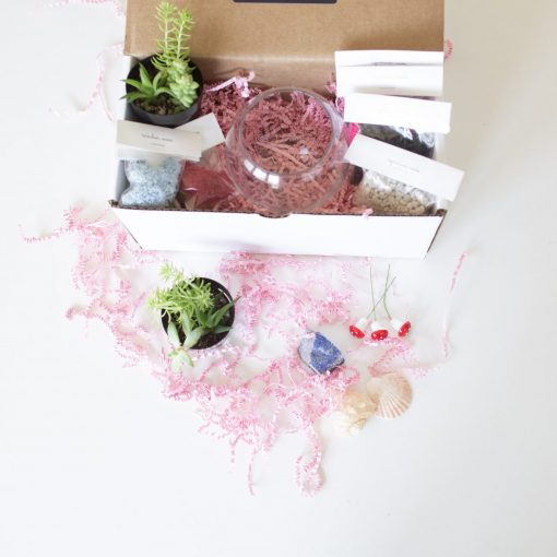 supplies-inside-the-make-your-own-succulent-terrarium-kit-scaled_square