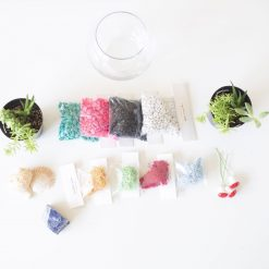 supplies-that-come-in-the-succulent-terrariium-kit-gardening-supplies-scaled-square