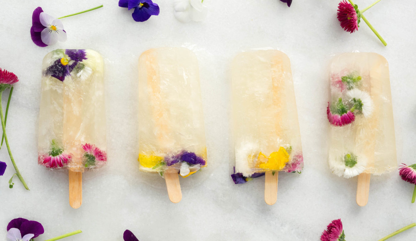 champagne_flower_St_Germain_popsicles-1-1360x787