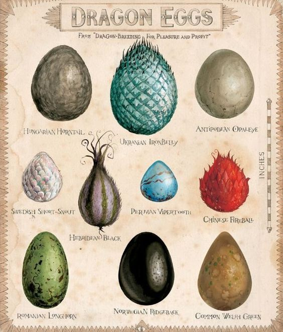 dragon egg art printable harry potter