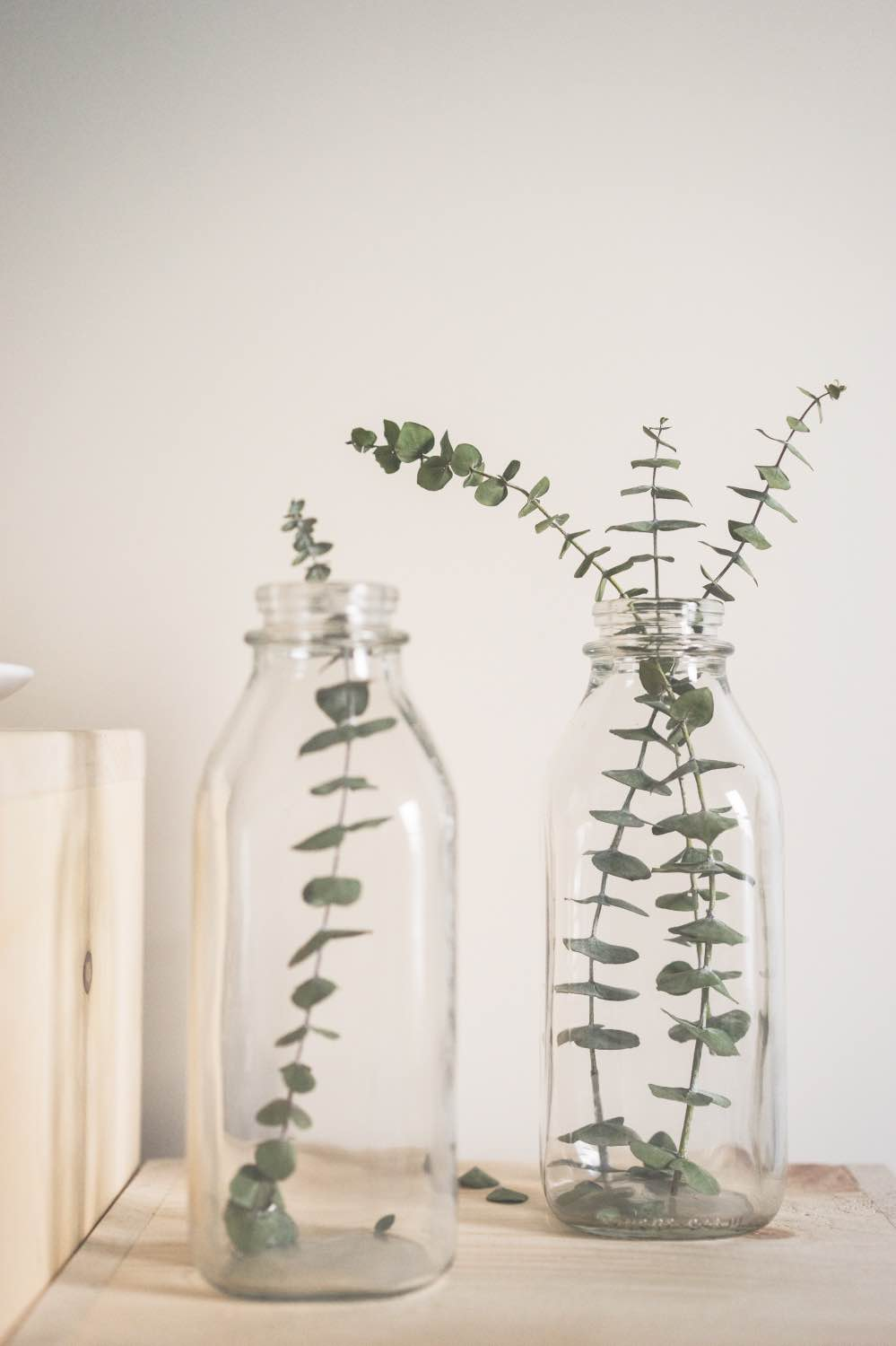 eucalyptus in a milk jar how to style mason jars pop shop america