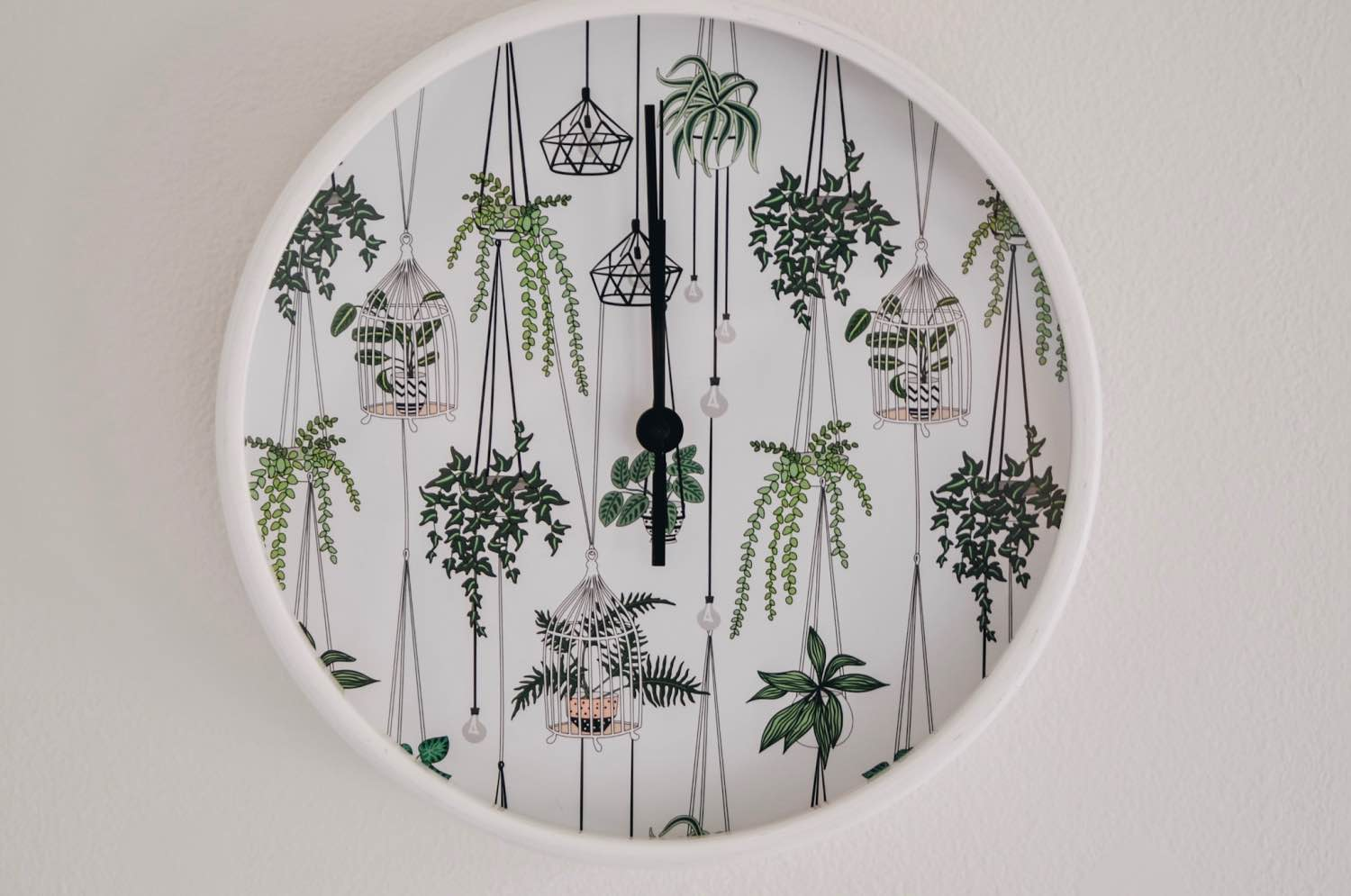 close up detail of terrarium clock from society6