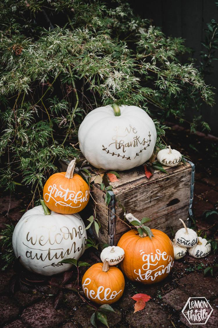 Hand-Lettered-Pumpkins-Lemon-Thistle-Blog