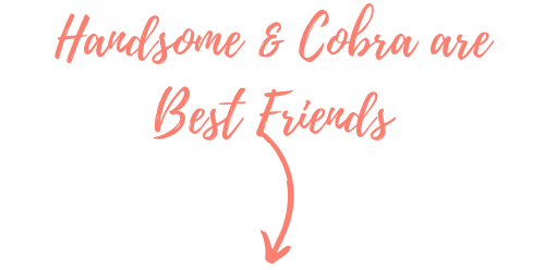 handsome and cobra are best friends graphic pop shop america