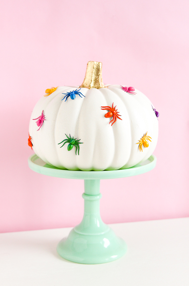 rainbow-spider-pumpkin-the-crafted-life
