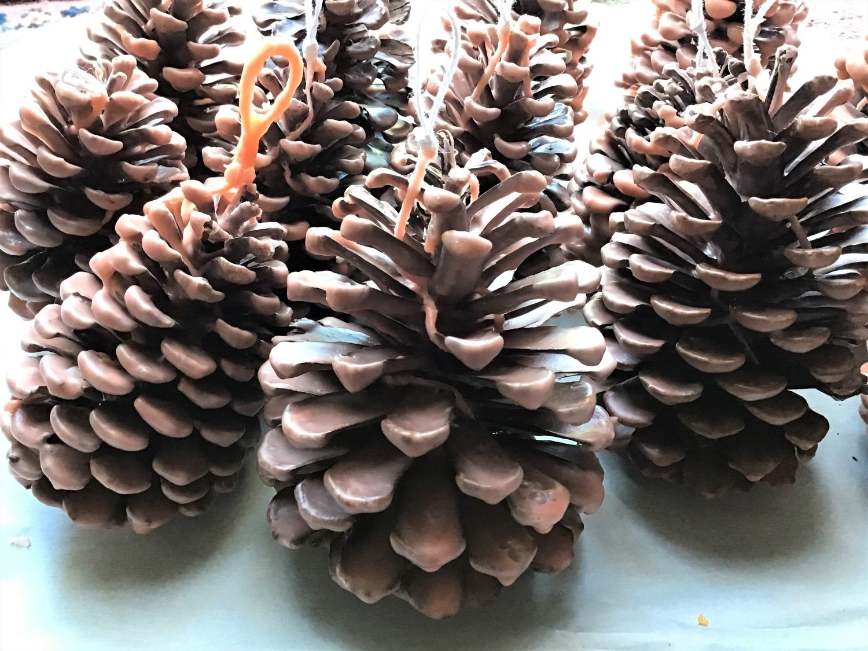 Pine Cone Fire Starter DIY Wax Dipped Two Coats