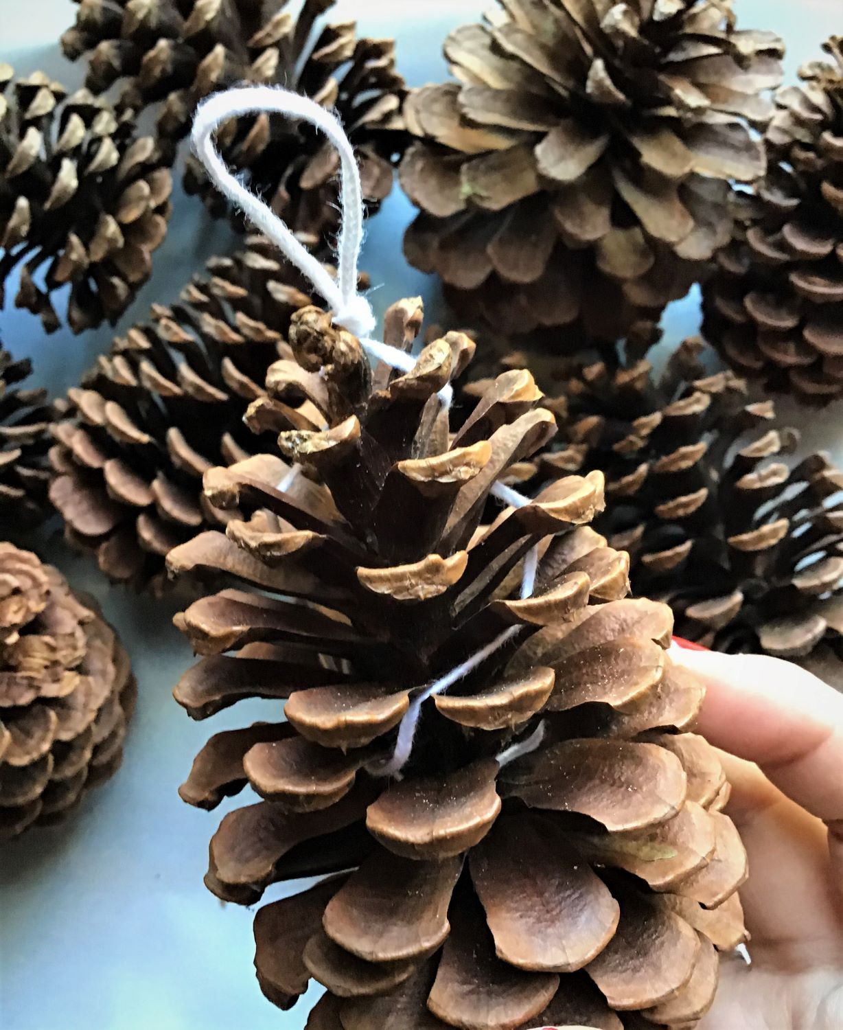 Pine Cone Fire Starter DIY Wrapped Wick Close Up