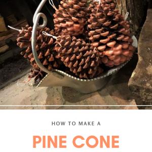 how to make a pine cone fire starter pop shop america