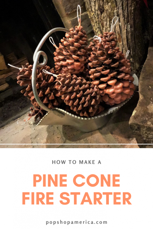 how to make a pine cone fire starter pop shop america
